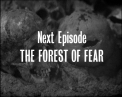 next episode forest of fear